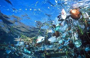 education-Atlantic-Garbage-Patch-5