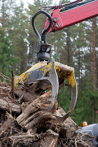 Wood waste processing