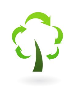 Green-Renew-Tree